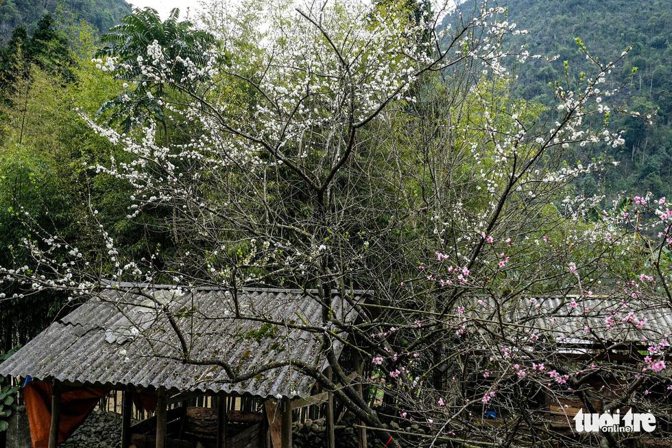 Có nên thu phí để phát triển du lịch cao nguyên đá Đồng Văn? - Ảnh 8.