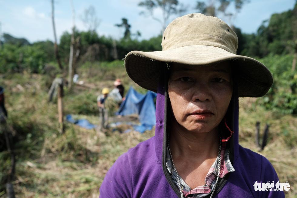 Người dân buồn bã vì tan hoang vụ lúa rẫy vùng sạt lở Phước Sơn - Ảnh 7.