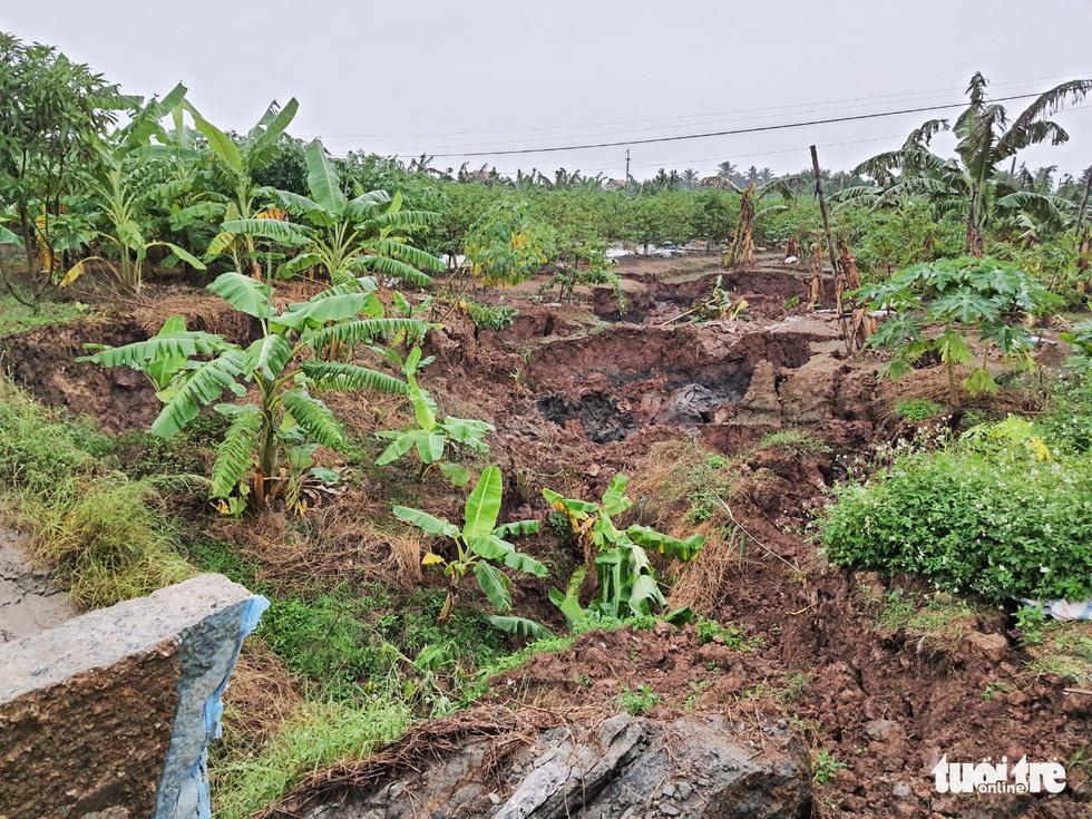 Hố tử thần rộng cả trăm mét vuông, nuốt chửng nhiều cây trồng - Ảnh 4.