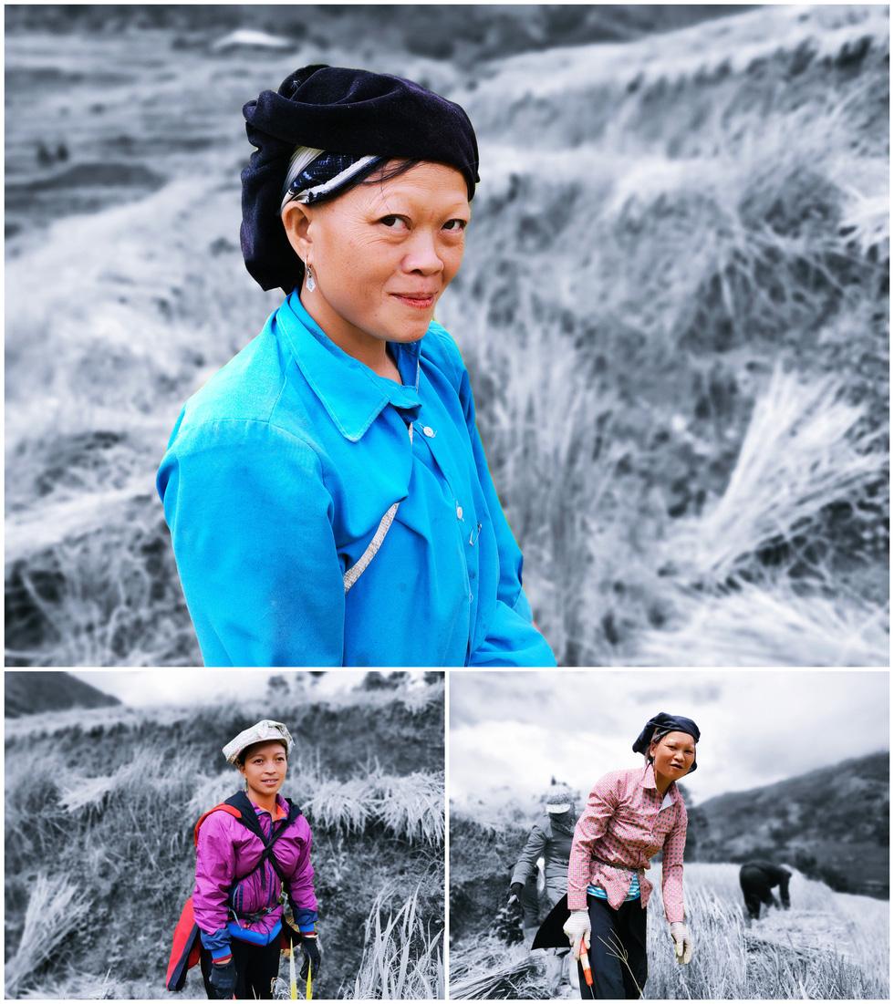 Hoàng Su Phì mùa lúa chín qua ống kính OPPO Reno 4 - Ảnh 11.