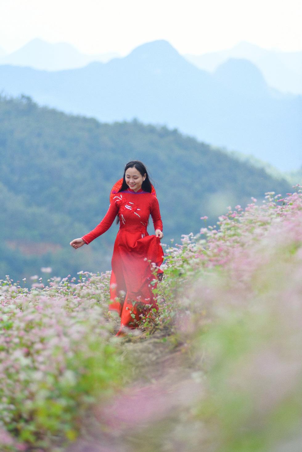 Cao nguyên đá Đồng Văn rực rỡ sắc hoa tam giác mạch - Ảnh 10.