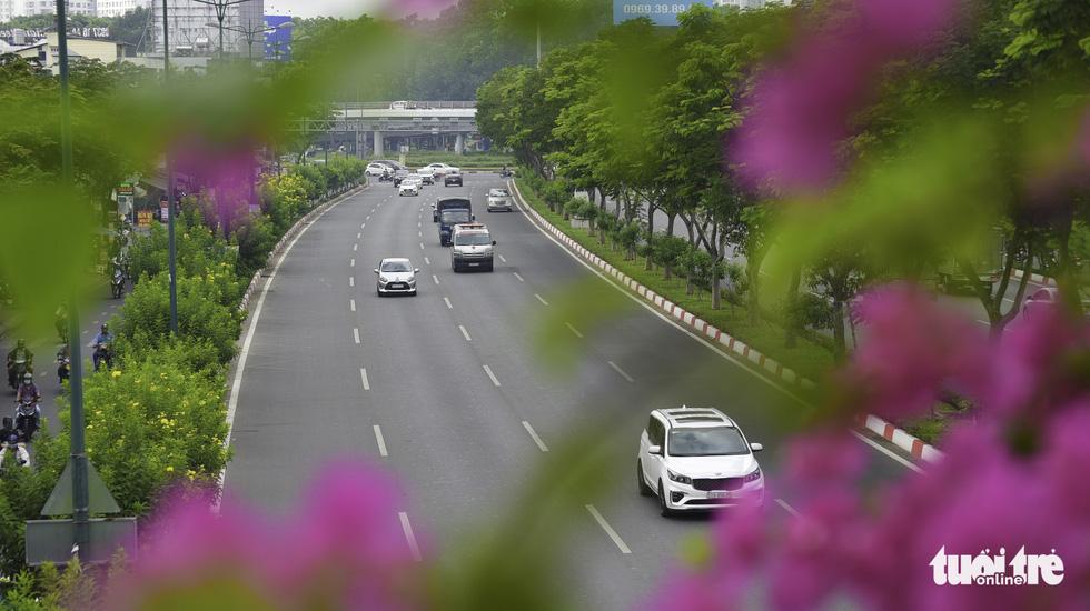 Tiết trời se lạnh, đường phố Sài Gòn rộ sắc hoa - Ảnh 9.