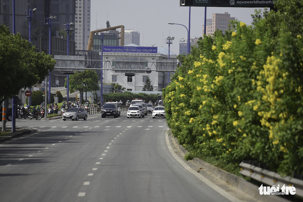 Tiết trời se lạnh, đường phố Sài Gòn rộ sắc hoa - Ảnh 1.