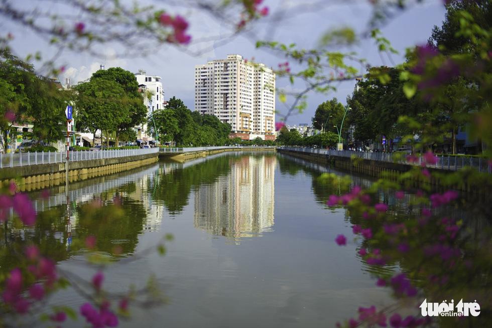 Tiết trời se lạnh, đường phố Sài Gòn rộ sắc hoa - Ảnh 10.