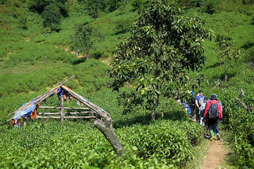 2 ngày leo đỉnh núi Tà Chì Nhù ngắm hoàng hôn tím lịm - Ảnh 1.