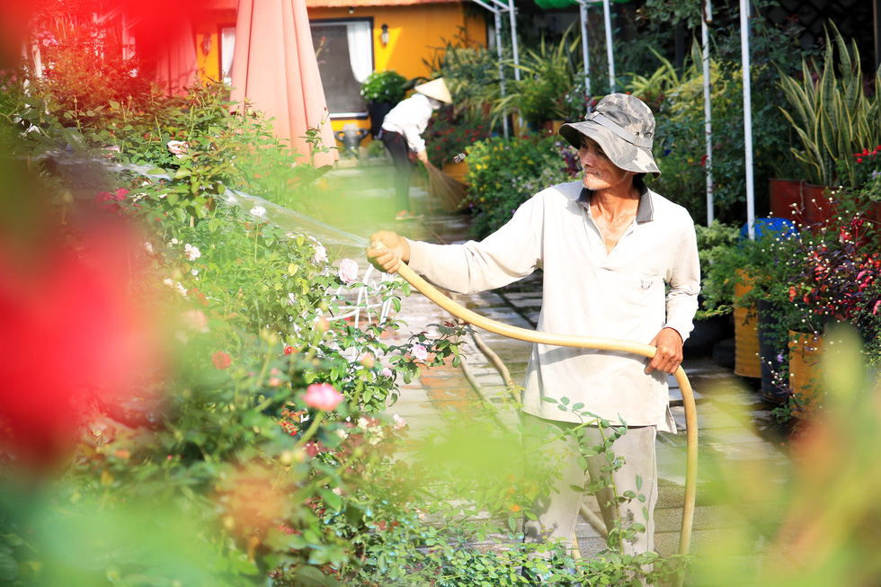 Say ngắm vườn hoa Đà Lạt nở rộ bên sông Sài Gòn - Ảnh 7.