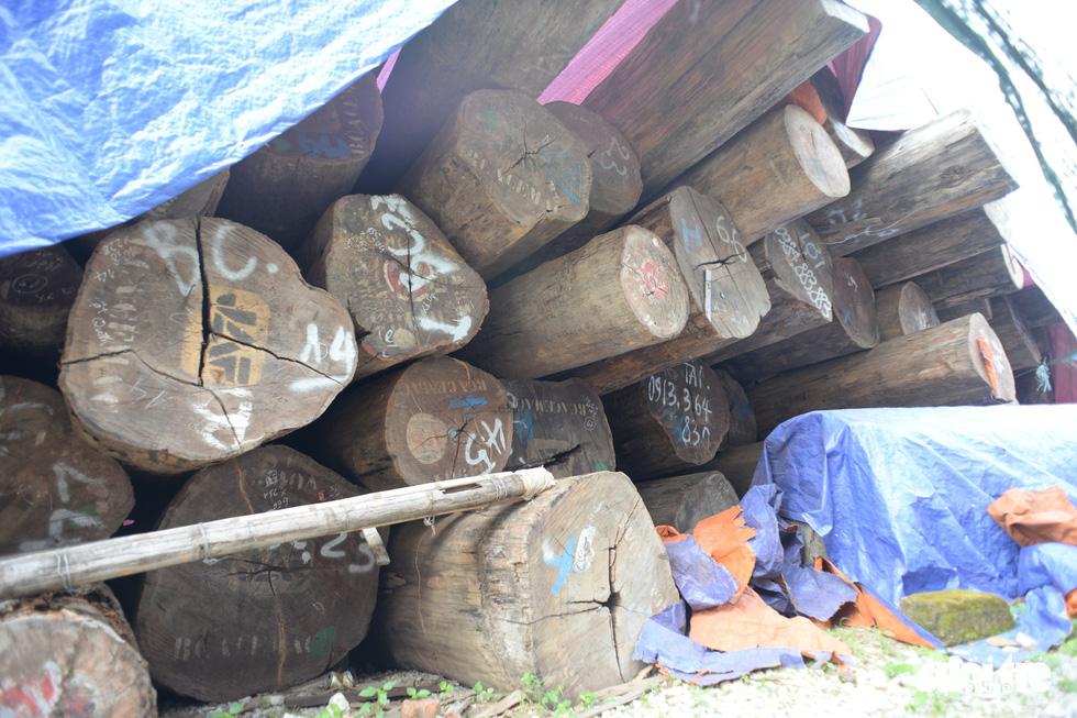 Vào xưởng mộc làm rường cột mới cho nhà thờ Bùi Chu - Ảnh 3.