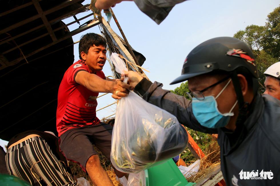 Người Sài Gòn xếp hàng 'giải cứu' dưa hấu, có người mua cả tấn làm từ thiện - Ảnh 6.