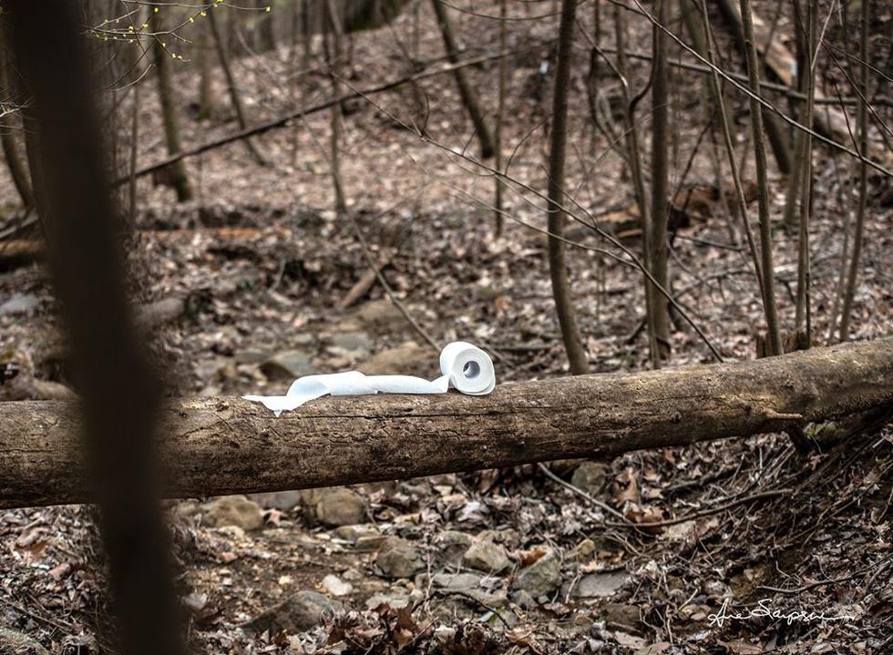 Nhiếp ảnh gia Mỹ 'gây sốt' vì bộ ảnh giấy vệ sinh 'sắp tuyệt chủng' - Ảnh 5.