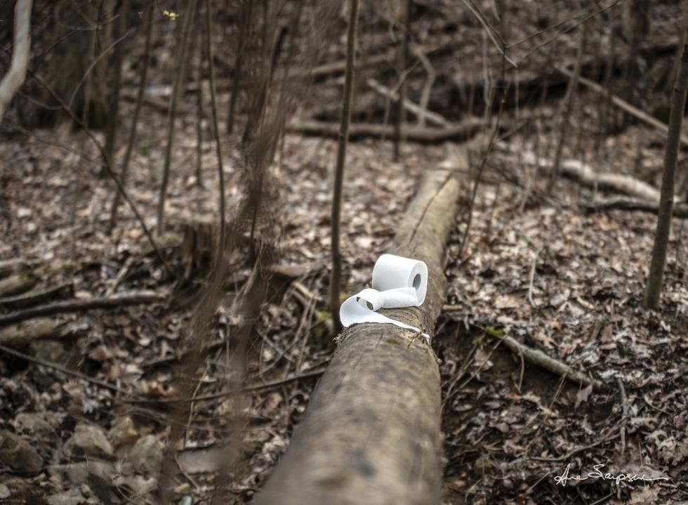 Nhiếp ảnh gia Mỹ 'gây sốt' vì bộ ảnh giấy vệ sinh 'sắp tuyệt chủng' - Ảnh 1.
