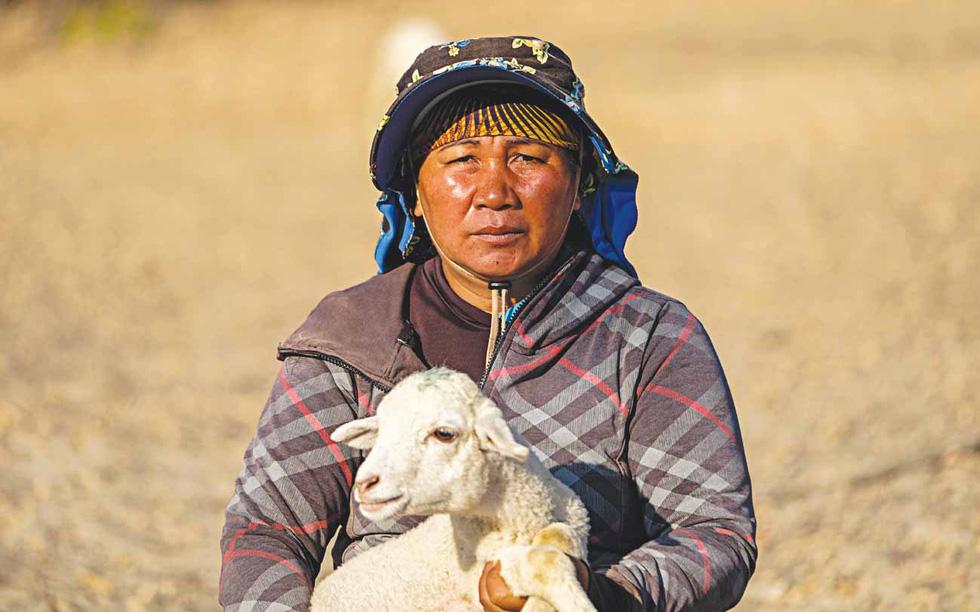 Du mục trên tiểu sa mạc Ninh Thuận - Ảnh 8.
