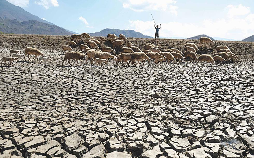 Du mục trên tiểu sa mạc Ninh Thuận - Ảnh 6.