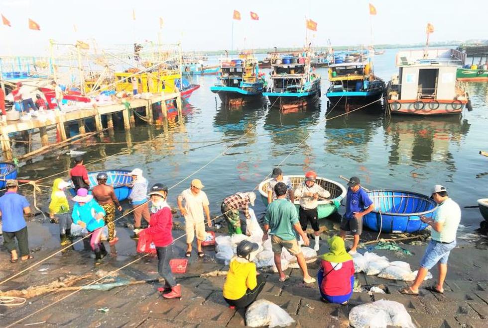 Tàu cập bến, ngư dân Quảng Nam phấn khởi bởi trúng mùa cá cơm - Ảnh 1.