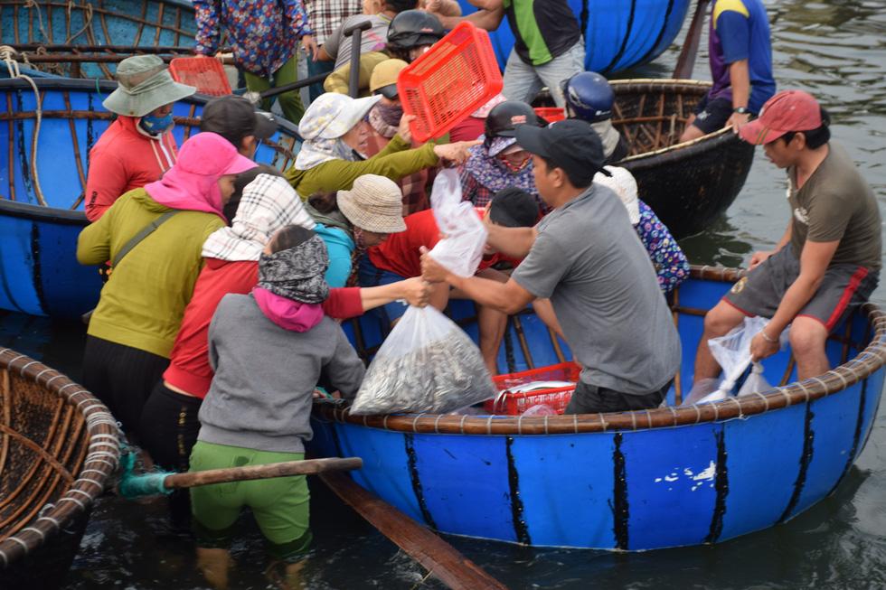 Tàu cập bến, ngư dân Quảng Nam phấn khởi bởi trúng mùa cá cơm - Ảnh 4.