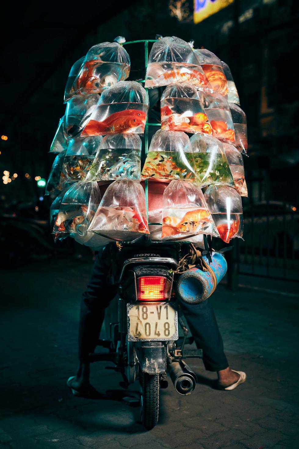 Xe bán cá cảnh rong ở Việt Nam chiến thắng giải ảnh tại Mỹ - Ảnh 1.