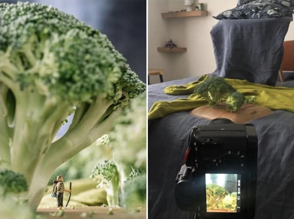 Ở nhà vì dịch, nhiếp ảnh gia du lịch sáng tạo bộ ảnh cực chất từ đồ dùng trong nhà - Ảnh 1.
