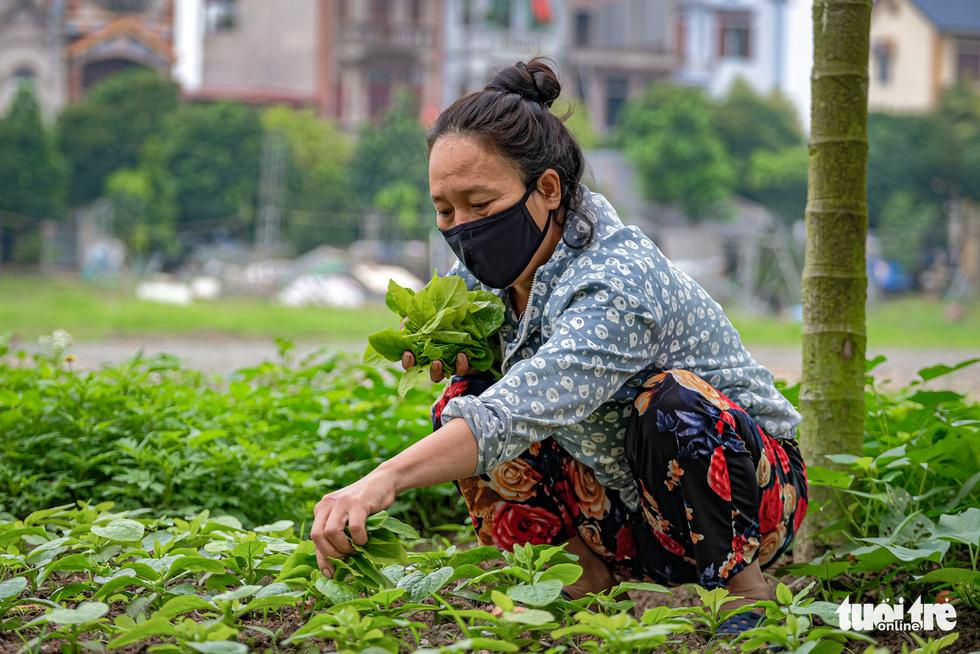 Cận cảnh cách ly thôn Hạ Lôi hơn 10.000 nhân khẩu vì liên quan bệnh nhân 243 - Ảnh 11.