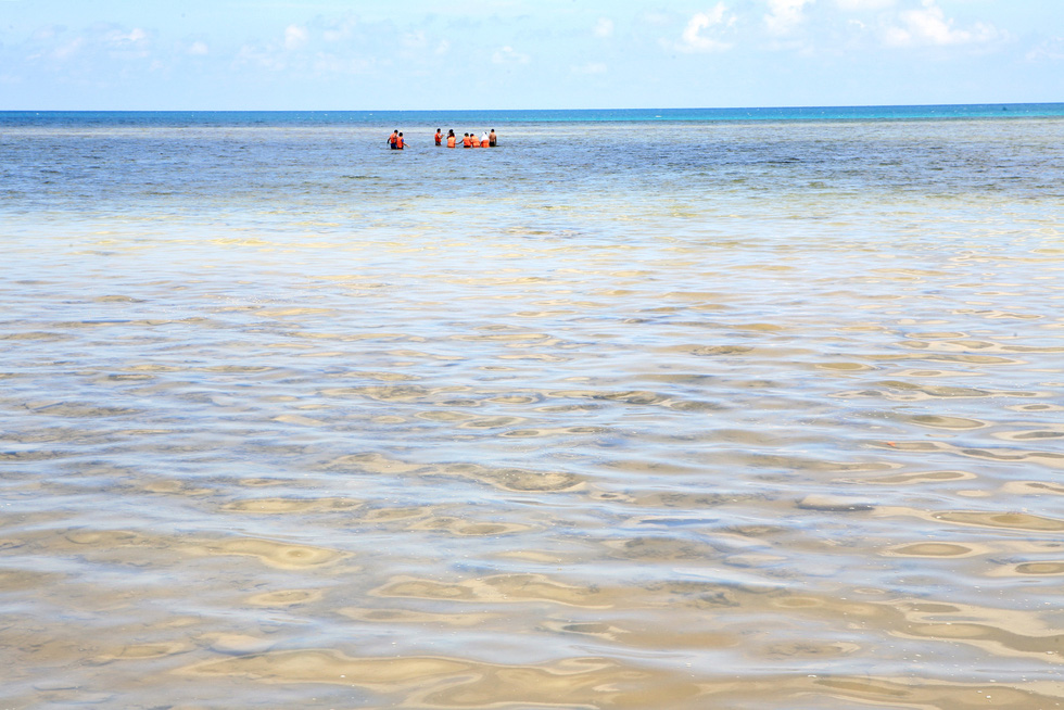 Hè đến rồi, lặn biển ngắm san hô nào! - Ảnh 4.