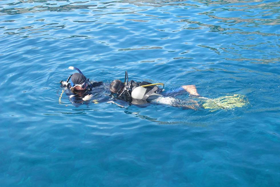 Hè đến rồi, lặn biển ngắm san hô nào! - Ảnh 8.