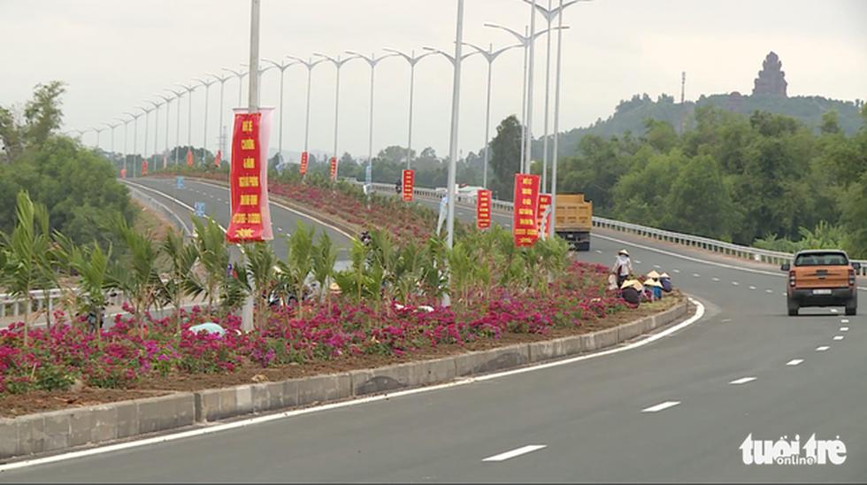 Hàng ngàn cây lá màu, bông giấy trên quốc lộ 19 mới bị nhổ trộm - Ảnh 2.