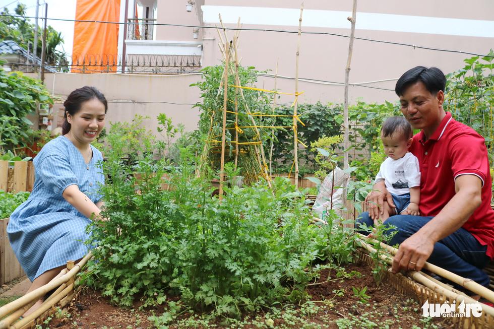 Đôi vợ chồng ở Sài Gòn biến khu đất 273m² thành vườn rau đầy cây trái sau thời gian cách ly - Ảnh 4.