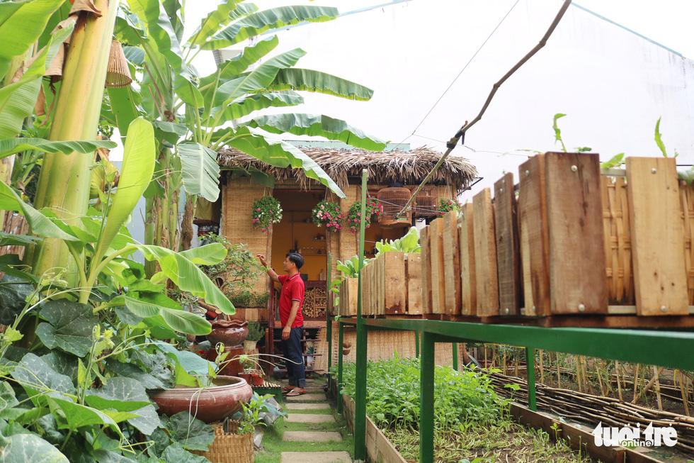 Đôi vợ chồng ở Sài Gòn biến khu đất 273m² thành vườn rau đầy cây trái sau thời gian cách ly - Ảnh 10.