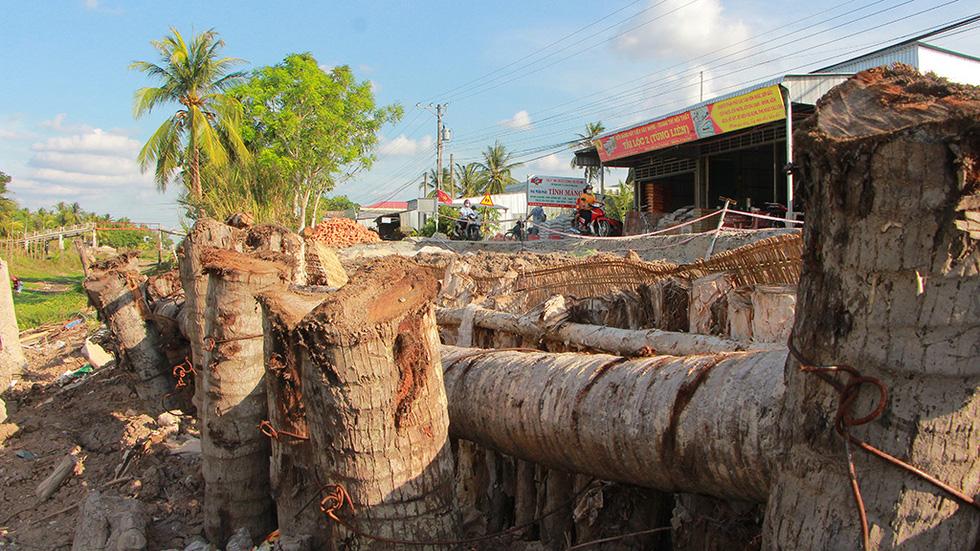 Tan nát những tuyến đường vùng ngọt hóa Cà Mau - Ảnh 2.