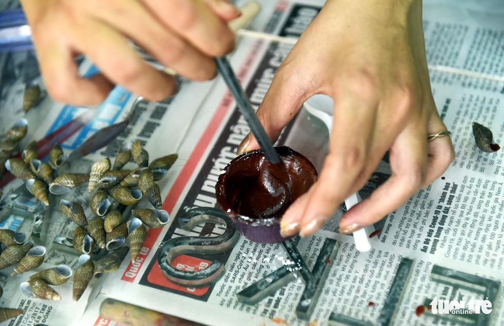 Vỏ sò, vỏ ốc: nguyên liệu tuyệt vời, thanh lịch và rất dễ dàng tìm thấy - Ảnh 2.