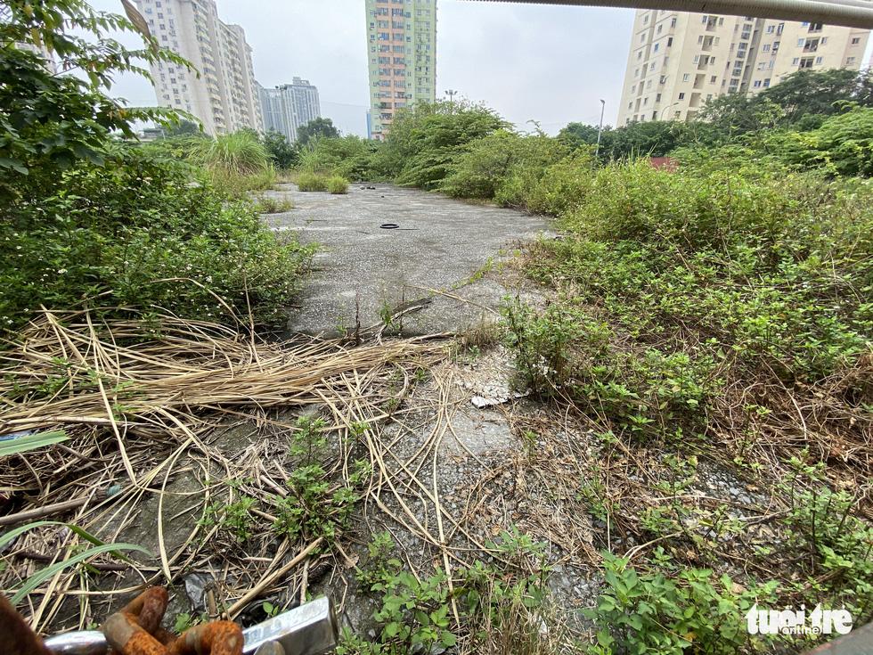 Cận cảnh lô 'đất vàng' 11 năm bỏ hoang ở Hà Nội bị kiến nghị điều tra - Ảnh 4.