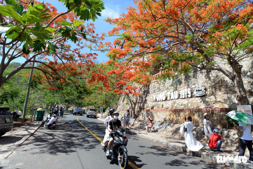 Rợp trời con đường hoa phượng đỏ ở Vũng Tàu - Ảnh 9.