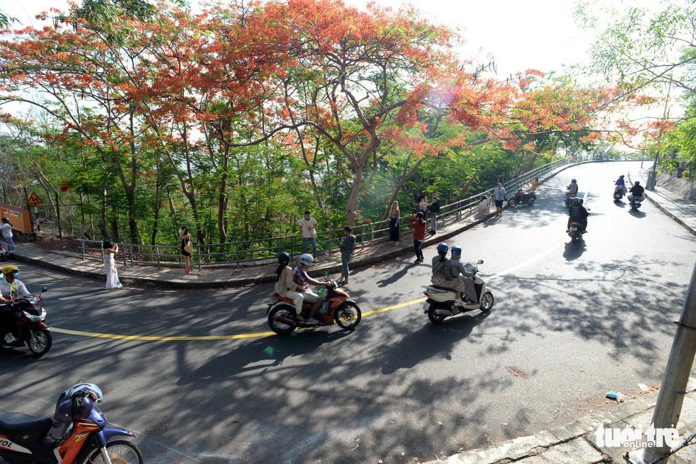 Rợp trời con đường hoa phượng đỏ ở Vũng Tàu - Ảnh 3.