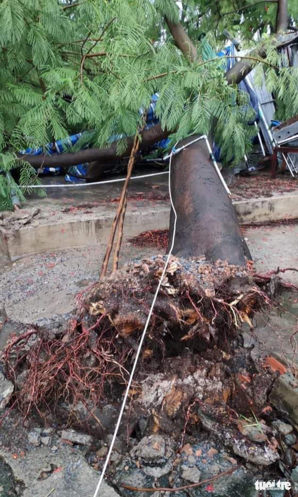 TP.HCM mưa gió mù mịt 2 tiếng: đường ngập khắp nơi, cây đổ, xe ngã... - Ảnh 3.