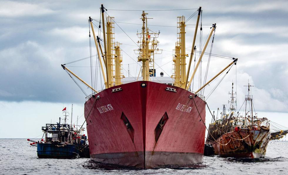 Săn lùng các đội tàu sát thủ đại dương - Kỳ cuối: Mafia đại dương - Ảnh 1.