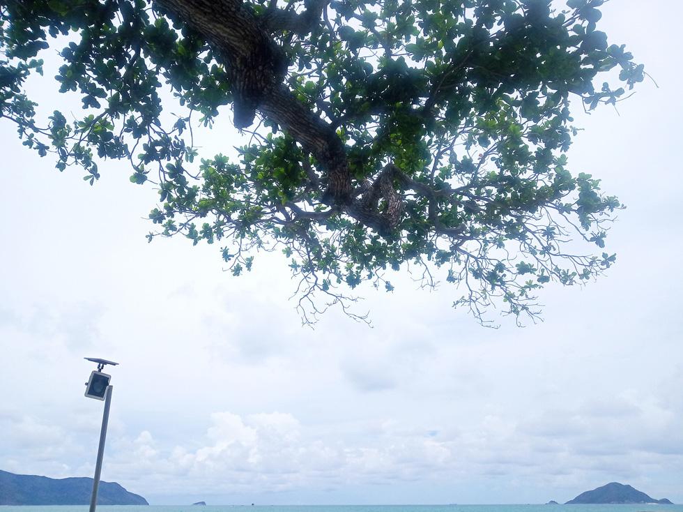 Thong dong Côn Đảo những ngày hè đẹp nhất trong năm - Ảnh 11.