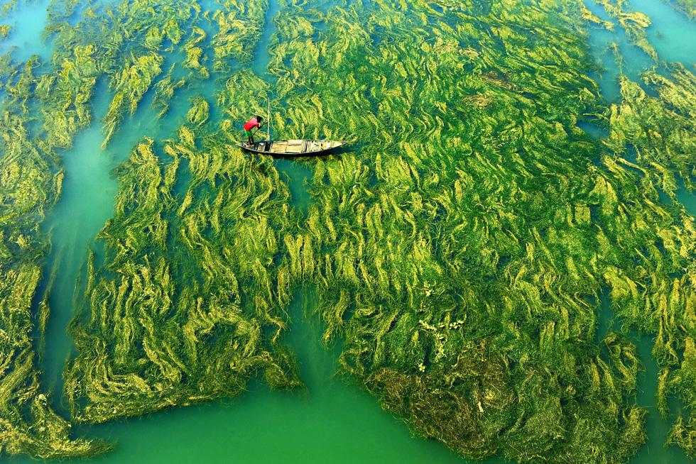 Sững sờ với nước qua giải Nhiếp ảnh quốc tế Hamdan năm 2020 - Ảnh 2.