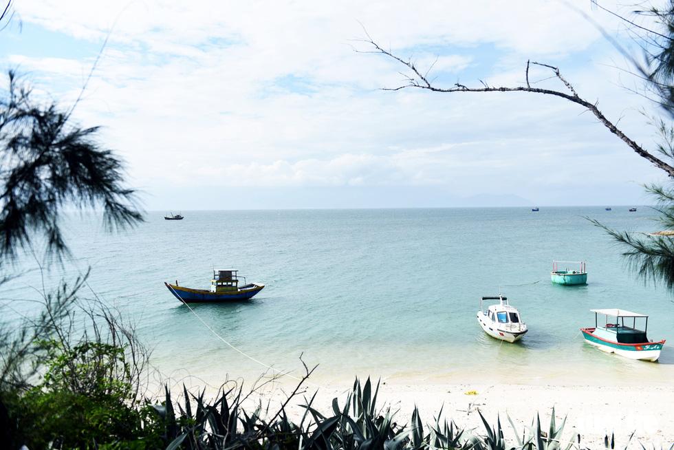 Đến Cù Lao Câu lặn ngắm san hô, ngắm vương quốc đá - Ảnh 11.