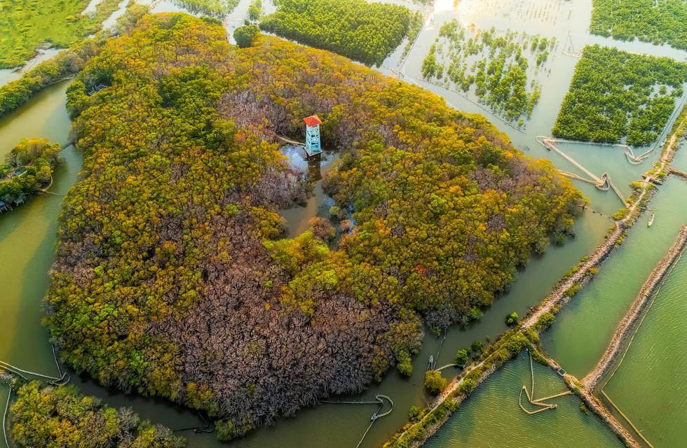Vẻ đẹp trù phú của vùng nước Tam Giang - Cầu Hai - Ảnh 11.