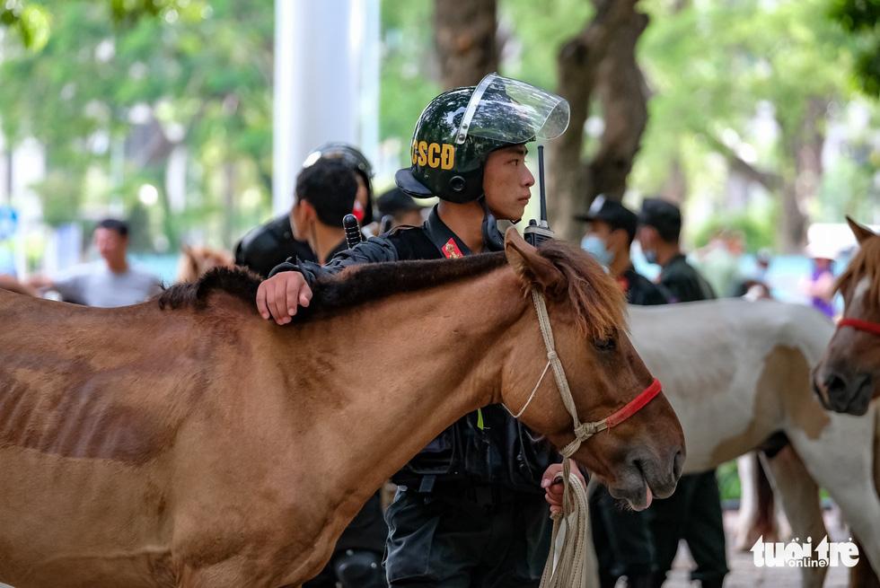 Ra mắt Đoàn cảnh sát cơ động kỵ binh - Ảnh 8.