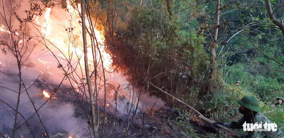Lao mình vào lửa dữ cứu rừng xuyên đêm  - Ảnh 2.