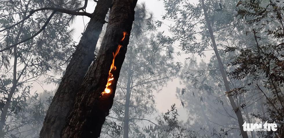 Lao mình vào lửa dữ cứu rừng xuyên đêm  - Ảnh 14.