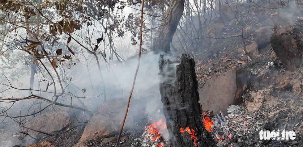 Lao mình vào lửa dữ cứu rừng xuyên đêm  - Ảnh 15.