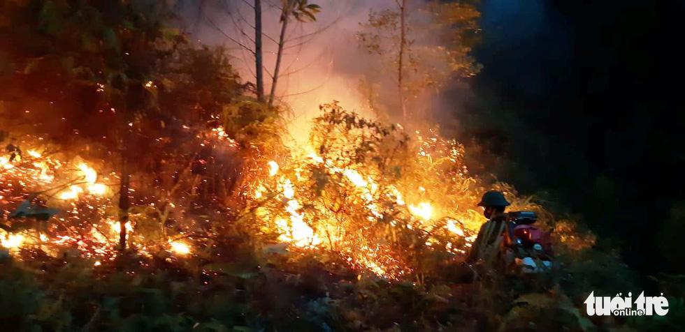 Lao mình vào lửa dữ cứu rừng xuyên đêm  - Ảnh 8.