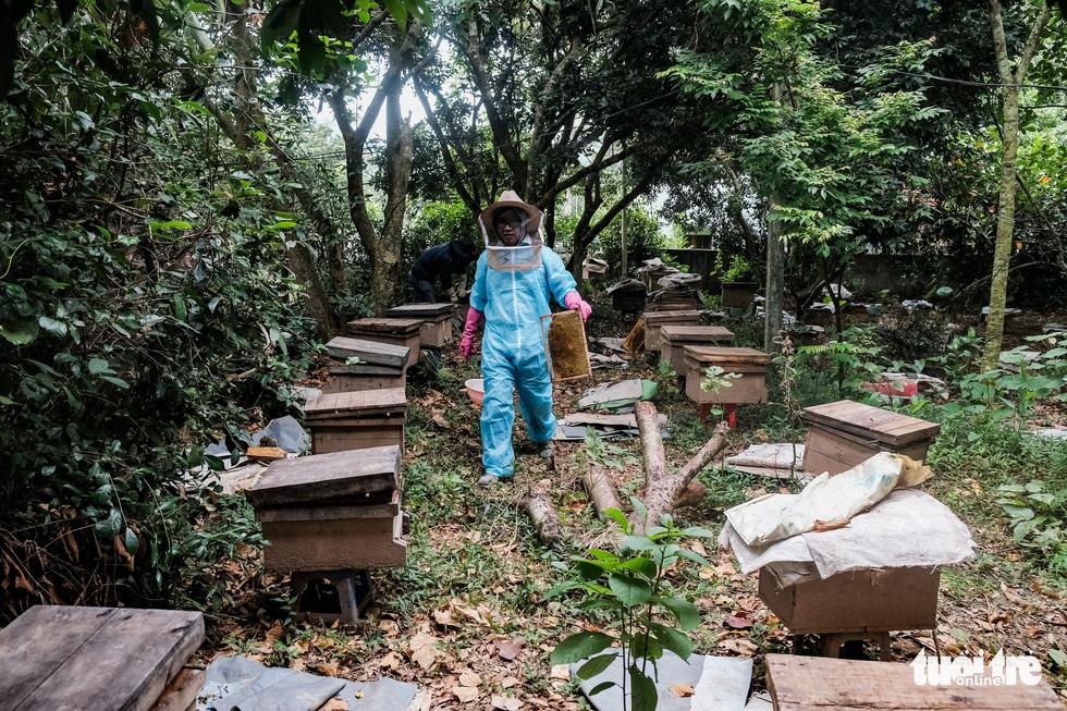 Một ngày theo chân gia đình gần 30 năm nuôi ong lấy mật - Ảnh 6.