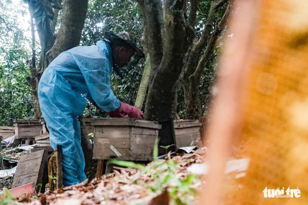 Một ngày theo chân gia đình gần 30 năm nuôi ong lấy mật - Ảnh 1.