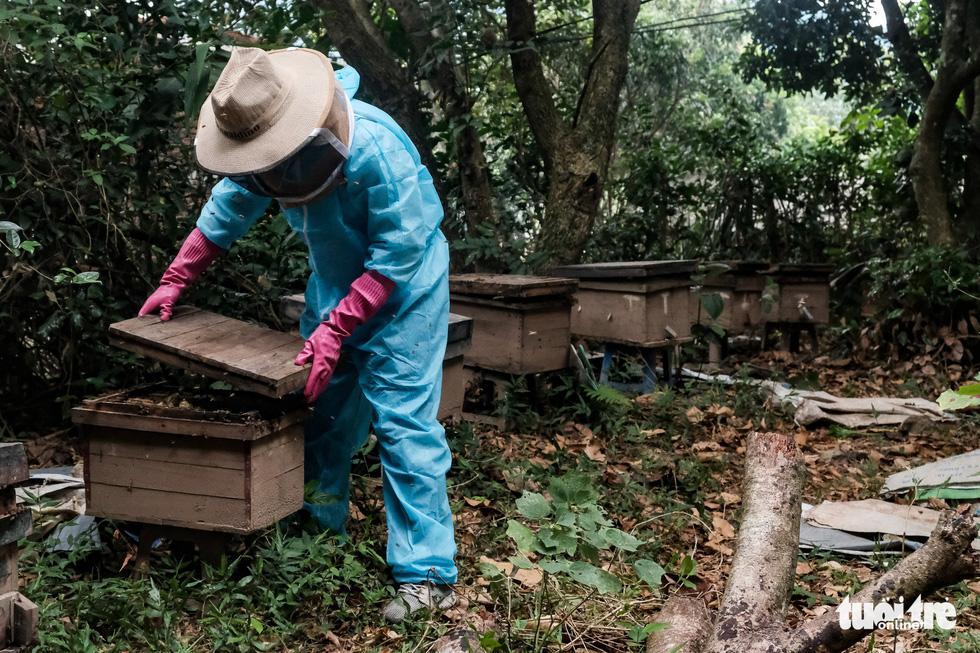 Một ngày theo chân gia đình gần 30 năm nuôi ong lấy mật - Ảnh 11.