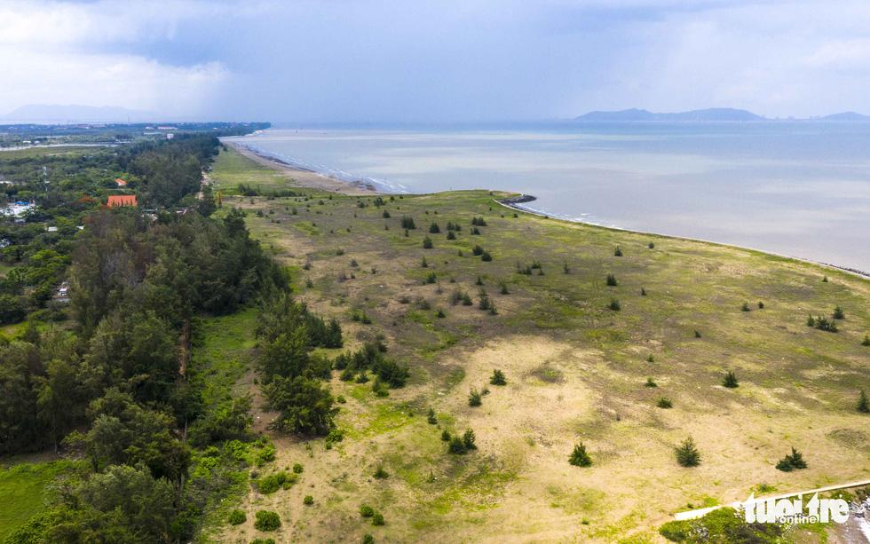 Dự án khu đô thị du lịch lấn biển Cần Giờ: Phải bảo tồn nguyên vẹn rừng ngập mặn - Ảnh 1.