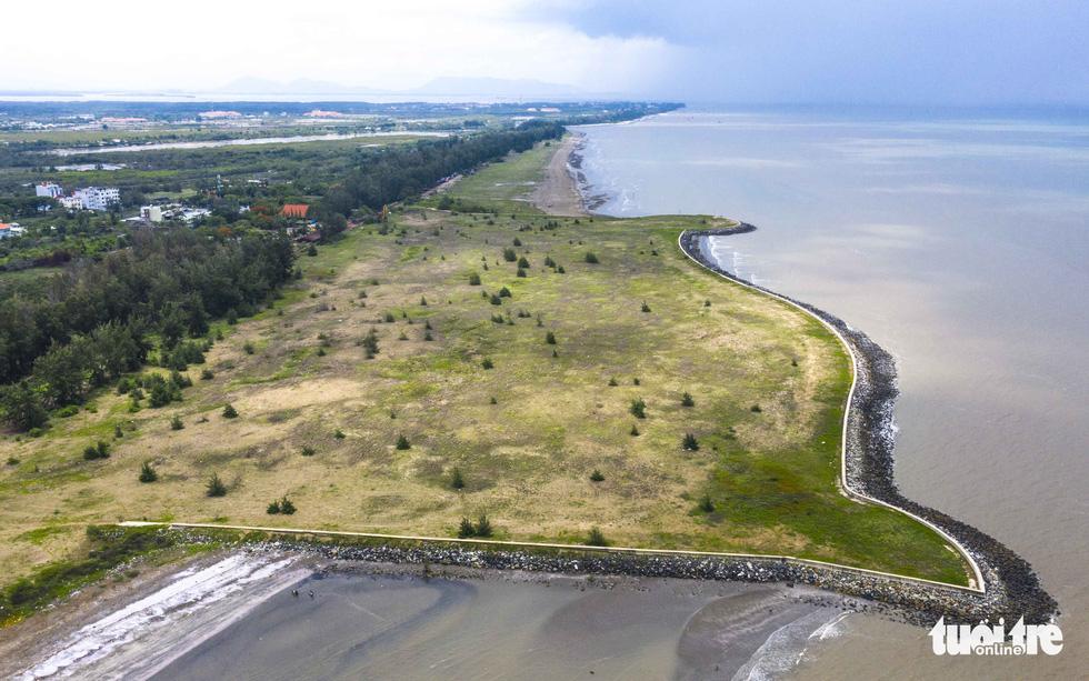 Dự án khu đô thị du lịch lấn biển Cần Giờ: Phải bảo tồn nguyên vẹn rừng ngập mặn - Ảnh 3.