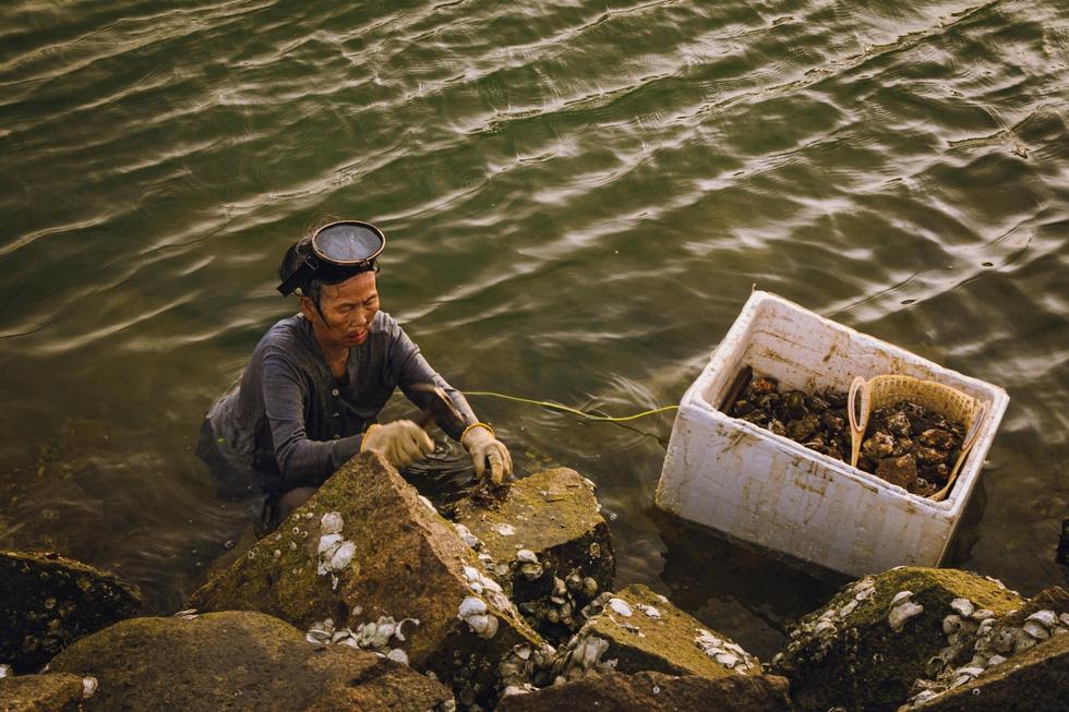 Kiếm tìm một Quảng Nam - Đà Nẵng sau ánh hào quang du lịch - Ảnh 5.