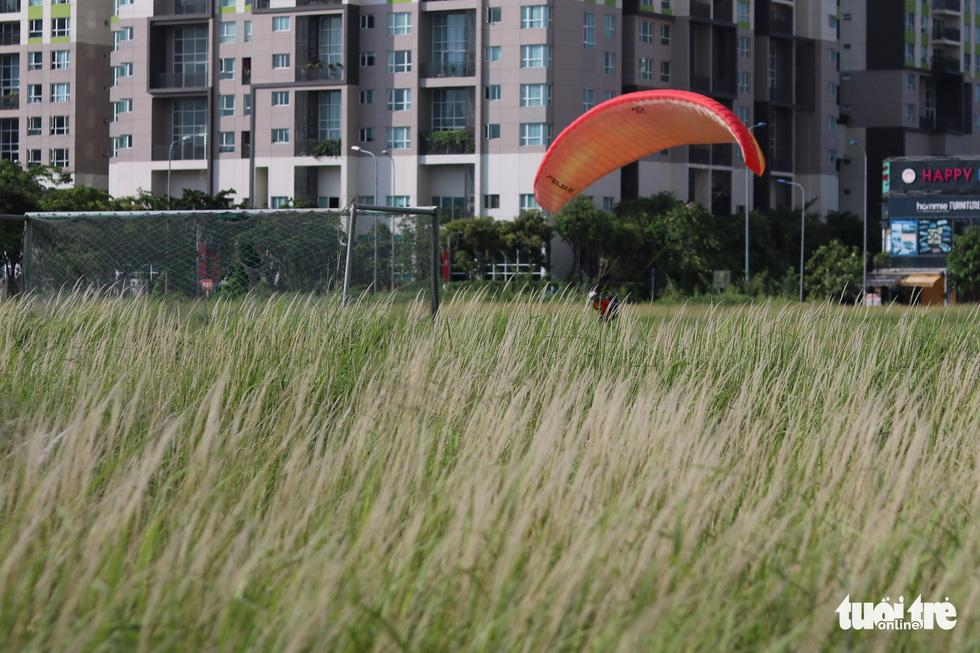 Bạn trẻ Sài Gòn thích thú check-in với cánh đồng cỏ hoang lau trắng - Ảnh 8.