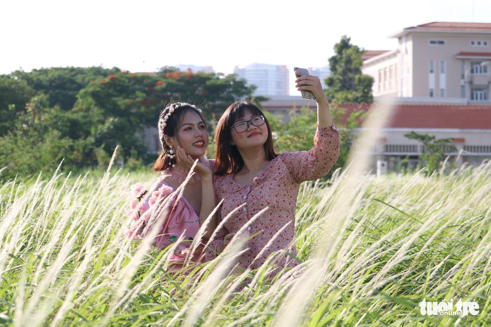 Bạn trẻ Sài Gòn thích thú check-in với cánh đồng cỏ hoang lau trắng - Ảnh 1.